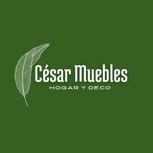 Cesar Muebles